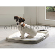 1343_Puppy_Trainer_starter_kit