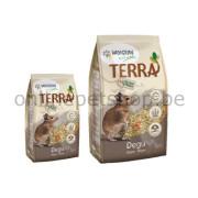 386020_386050_TERRA_Degoe
