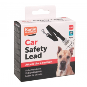 carsafetylead